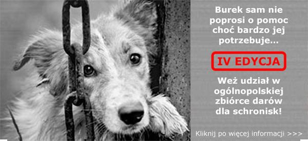 baner_chwila_dla_pupila
