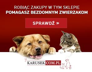 karusek_chwila_dla_pupila_istock