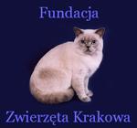 00_zwierzeta_krakowa