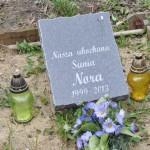 Cmentarz w Bytomiu 0853