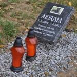 Cmentarz w Bytomiu 0876