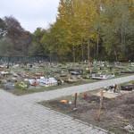 Cmentarz w Bytomiu 0880