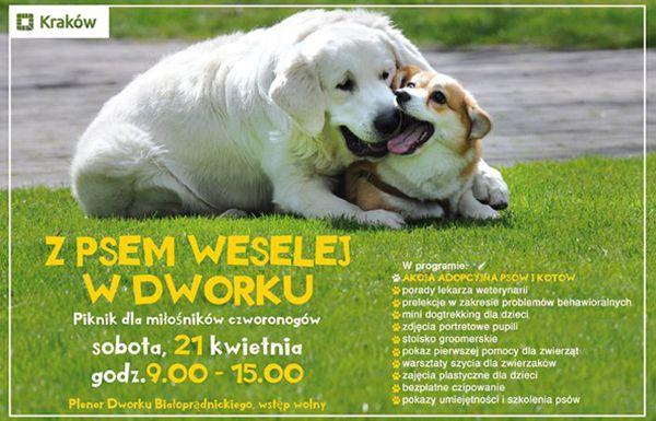 dworek_www